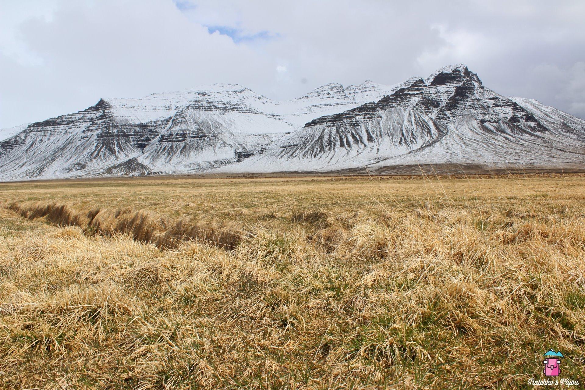 Suchá tráva, sníh, hory....ty barvy jsou prostě úžasný